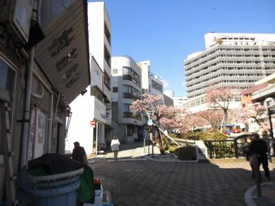 糸川遊歩道前の村越魚店